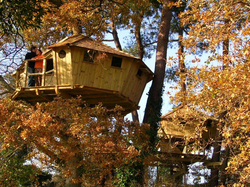 Cabane dans les arbres, hébergements insolites