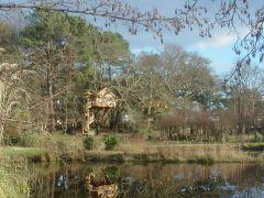 Léonie vue sur étang