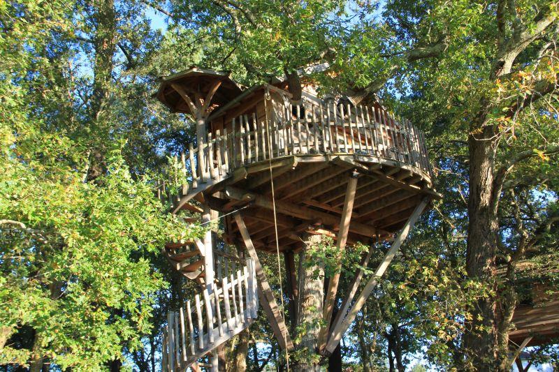 cabanes dans les arbres landes