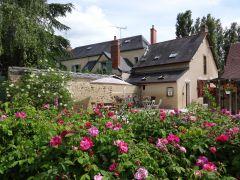 la terrasse de La Vie en Rose