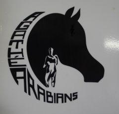 Agathé Arabians