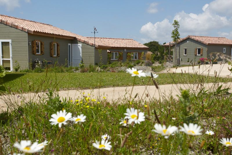 Nos cottages au coeur de la nature