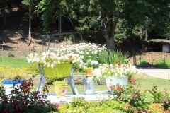 moulin jardin