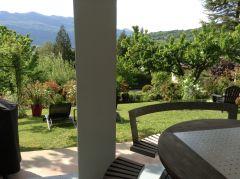 jardin en journée