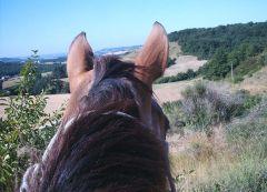 Découvrir le Lot et Garonne à cheval