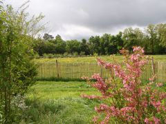 le jardin vers le sud