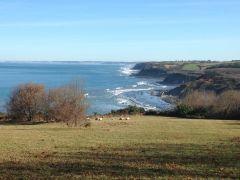 une vue de la voie verte la corniche basque