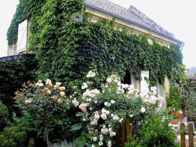 La maison d 39 amis une chambre d 39 h tes de charme en touraine for Maison hote touraine