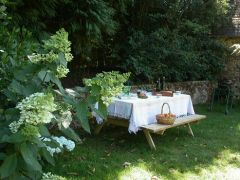 Pique-nique au jardin