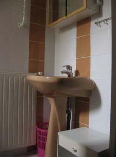 La salle d'eau 1