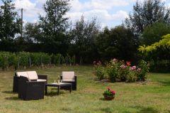 le jardin avec les vignes
