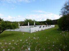 jardin+piscine