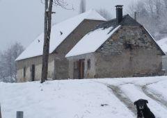 cabane hiver