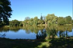vue sur l'étang au reveil