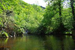 Rivière et bassin