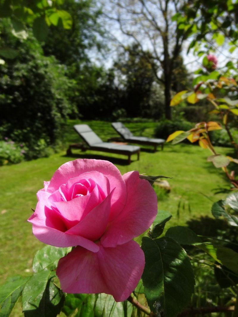 jardin privatif vue depuis le cottage