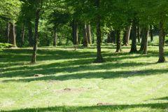 le domaine est un grand parc arboré au bord de la piste cylable