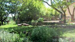 Terrasse, jardin