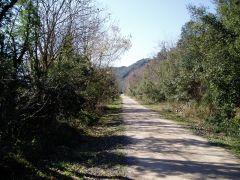 la voie verte qui longe le parc