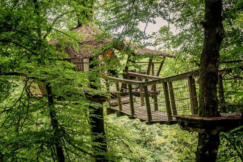cabane dans les arbres Vallée dePratmeur