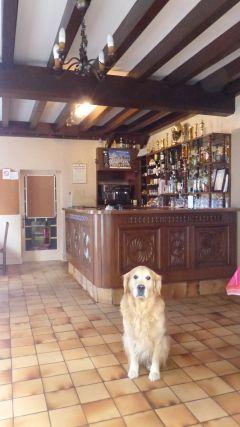 Aperçu de la Salle de Bar  et Clovis