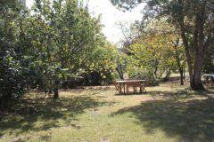 Le jardin Bastide de Lassalle