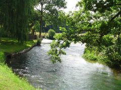 La rivière coule dans le jardin