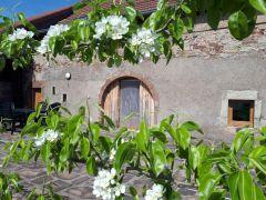 La terrasse en fleurs
