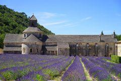 l'abbey de Sénanque