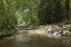 Petite rivière à 500m