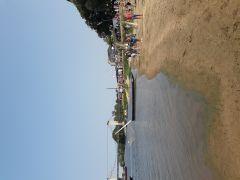 Pont ,grève de Montjean/Loire