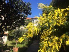 Oasis de charme entre mer et montagne ecrin de verdure au coeur de Toulon