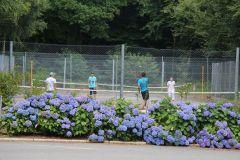 Terrain e tennis
