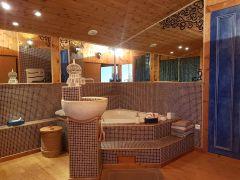 salle de bain + dressing